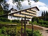 Hotel a depandance SRNÍ - Srní