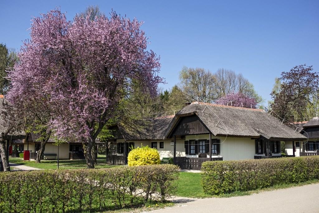 Bungalovy TERMAL - Budapeszt i okolice