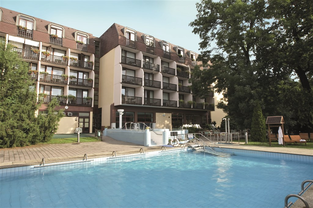 Hotel DANUBIUS HEALTH SPA RESORT SÁRVÁR -